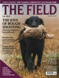 The Field January 2018 Nr1